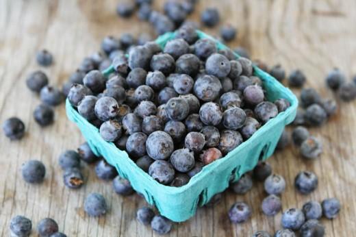 Blueberries 4 520x346