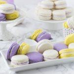 Lavender Macarons hero 1