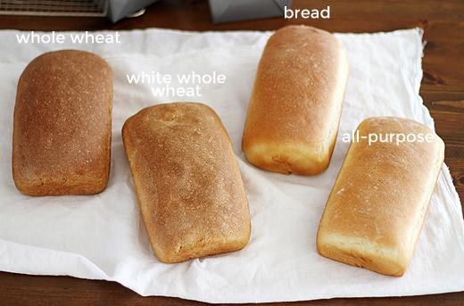 bread_11_text_Best-Flours-for-Baking-Bread