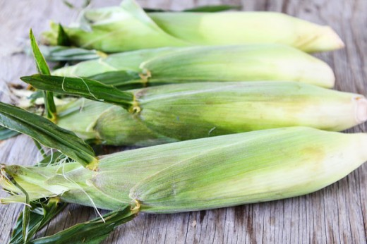 sweet corn 5 520x346